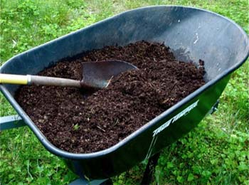 Terreautage de pelouse